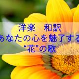 """洋楽 和訳 あなたの心を魅了する""""花""""の歌"""